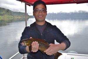 Trout Lake fishing Mapourika