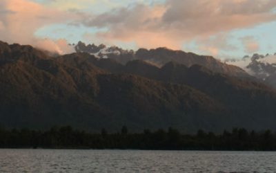 Franz Josef Tours – How the Kiwi Lost His Wings