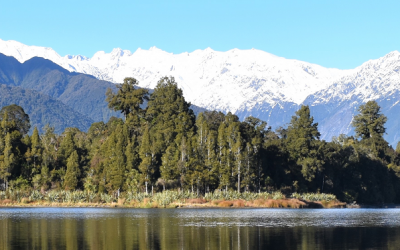 Cruise or Fish this winter on Lake Mapourika! – Franz Josef Glacier, West Coast