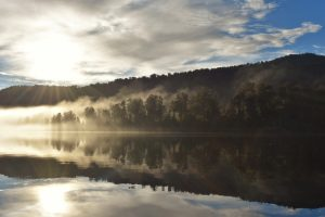 A reflection of the forest on Lake Mapourika, West coast nz