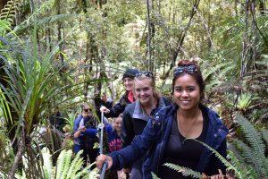 A group walking through native NZ rainforest on Lake Mapourika