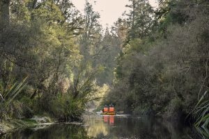 The Kayak Classic and Kayak & Walk Tour.  Let us help you choose!